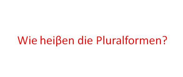 Screenshot 1 - Wie heiβen die Pluralformen?