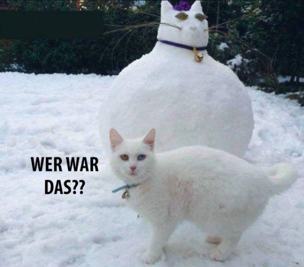 luiv - WER WAR DAS??