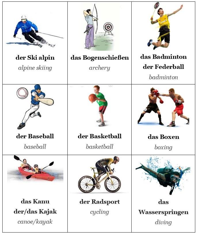 bergv - Der Sport
