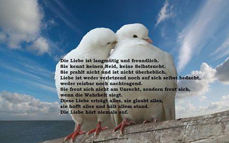 1947922 634096226731227 3957619582521241772 n - Die Liebe