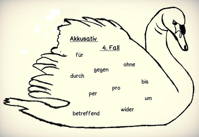 2w4hj2W4H - 4.Fall