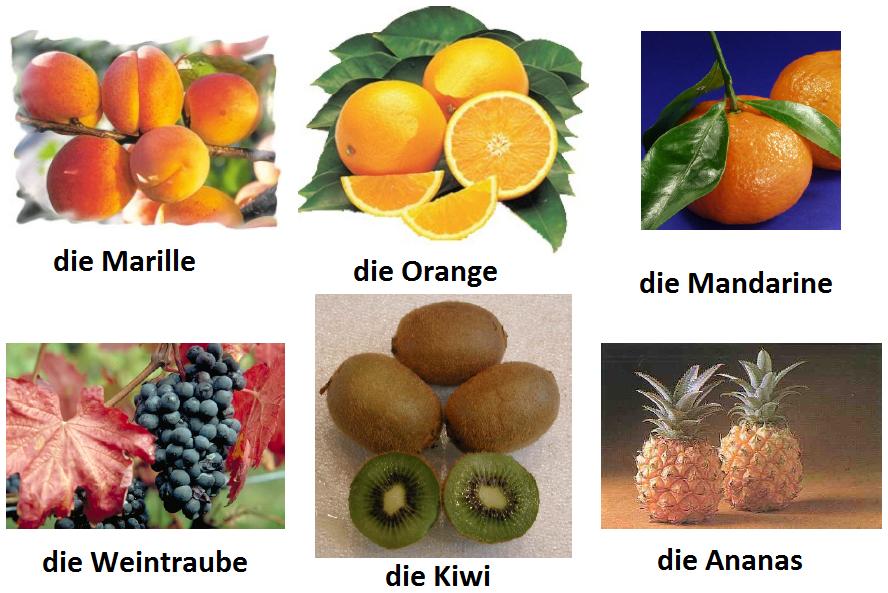 tfuzgiu - Orange, Kiwi ...