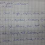 gzihuo 150x150 - Sa nevedenim glagolima i imenicama oblikujte rečenice.