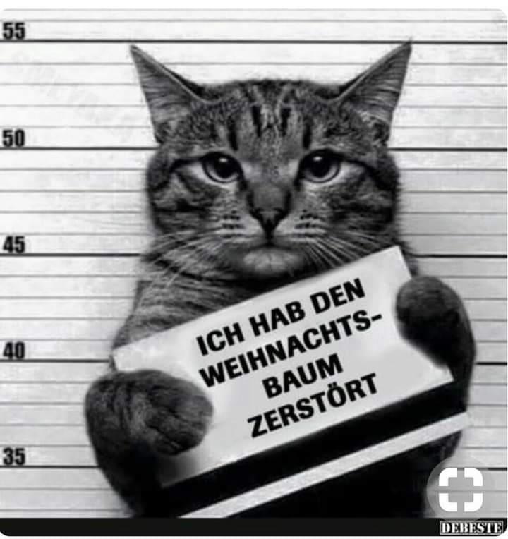 52093961 637334226686005 971730127312388096 n - Gute Nacht