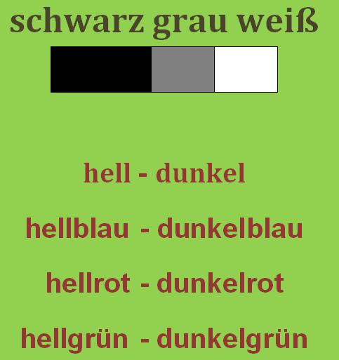 zctgvzik - schwarz/grau/weiß