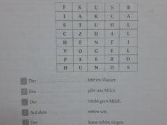 61367659 442455899853330 6379647771829338112 n 240x180 - Suche die fehlenden Wörter im magischen Quadrat! Ergänze die Sätze!