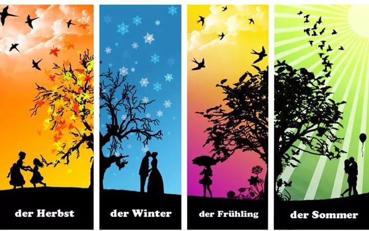 62208105 306139220328561 3877672800416169984 n - der Herbst, der Winter ...