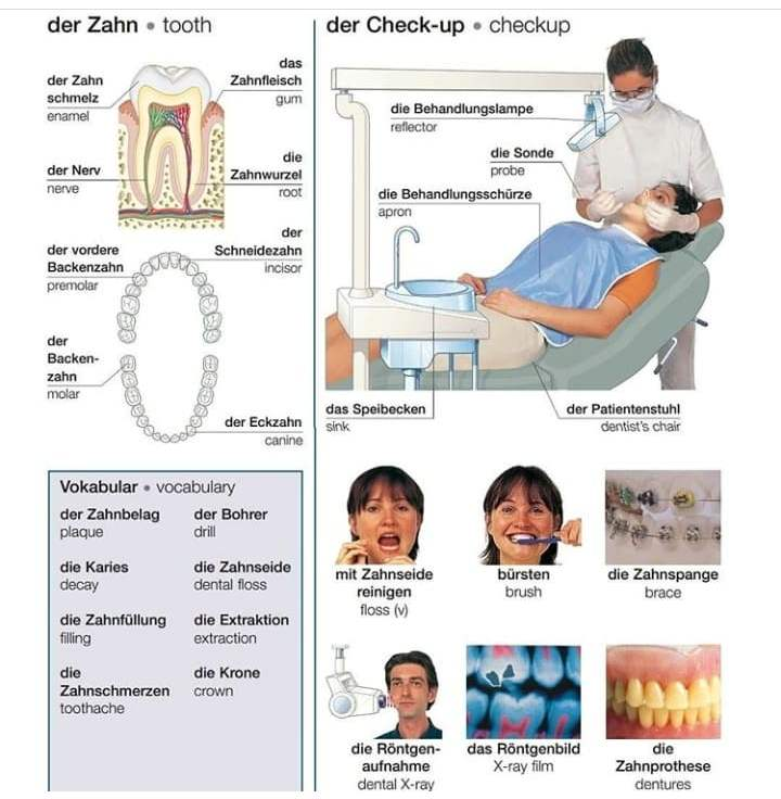 66704803 322416652002061 1482098741748957184 n 1 - der Zahn ;der Check-up