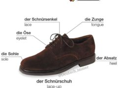 67073450 1371396969666491 6013152525924958208 n 240x180 - Die Schuhe