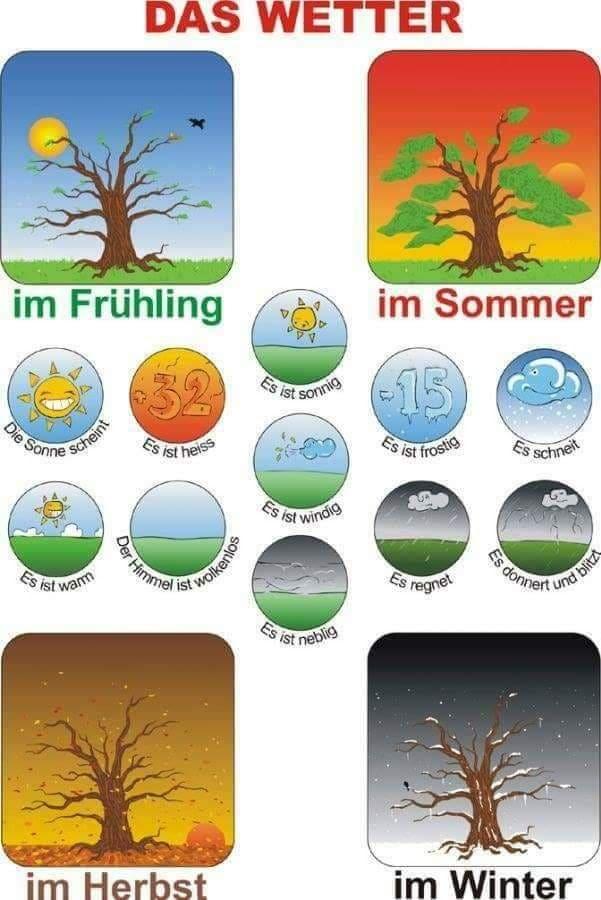 cfgvh - das Wetter