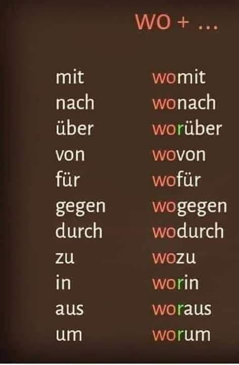 dsfdg - WO +…