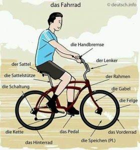 mhjg 279x300 - das Fahrrad