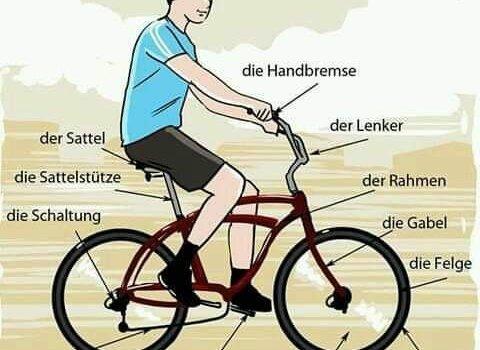 mhjg 480x350 - das Fahrrad